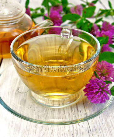 tea with clover in glass cup