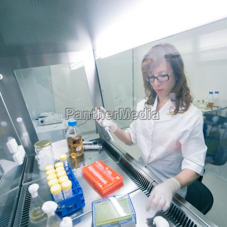 life, scientist, forscht, im, labor. - 14165145
