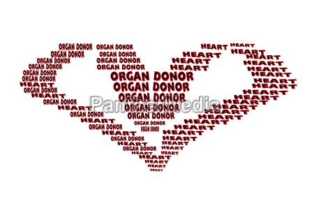 organ spender text in herzform