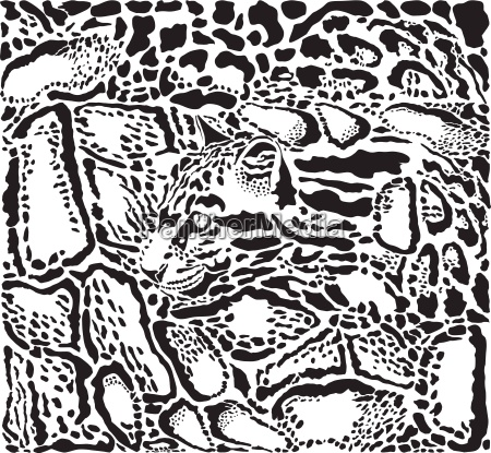 background with clouded leopard skins and