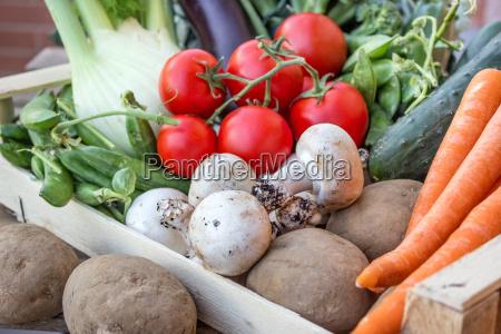potatoes cucumber squash peas carrots carrot