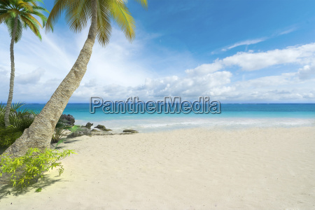 leerer tropischer strand