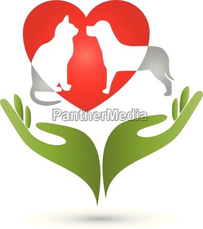 katze hund logo haende herz