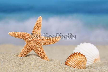 viaggiare vacanza vacanze riva del mare