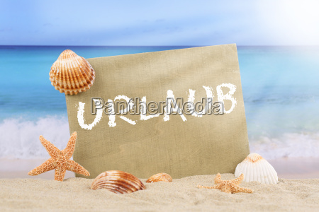 beach ocean scene in summer vacation