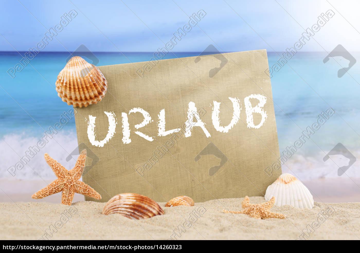 strand meer szene im urlaub im sommer mit seestern und