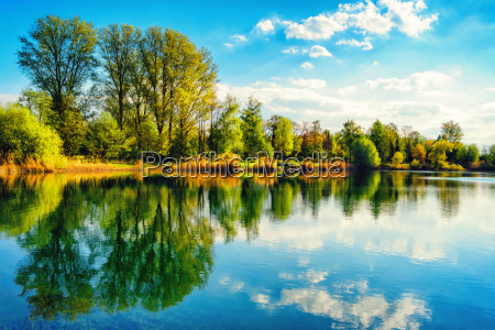 tranquil lakeshore landscape with blue sky