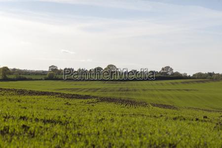 OEkologische landwirtschaft