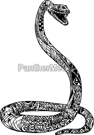 freisteller farbe illustration abgeschieden schlange malen