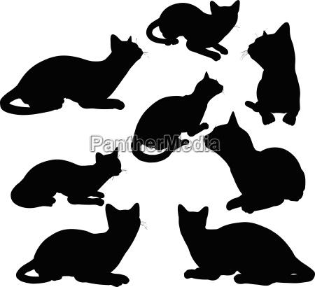 katze silhouette in sitzender haltung