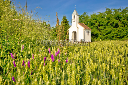 katholische kapelle in laendlichen agrarlandschaft