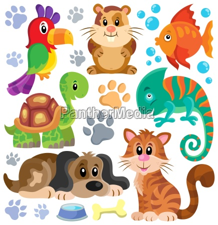 pets theme collection 1