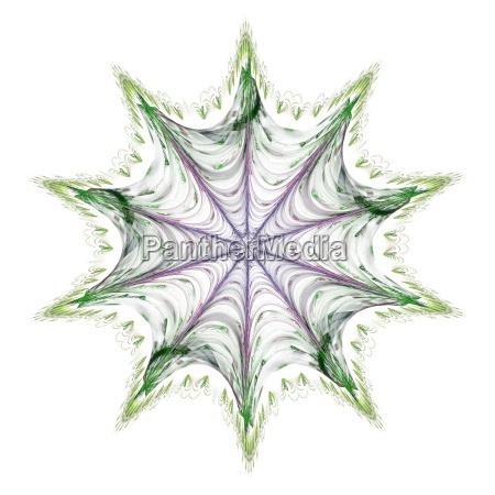 blumen sterne spiralen