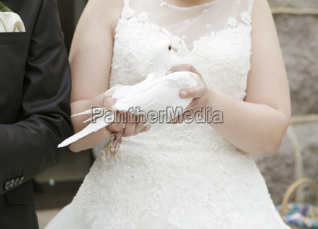 bride with pigeon in hand