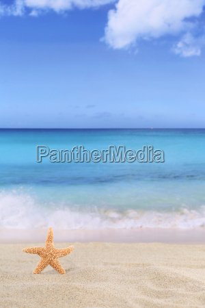 strand szene hintergrund im sommer urlaub