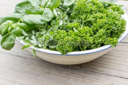 bowl with parsley basil burnet rocket