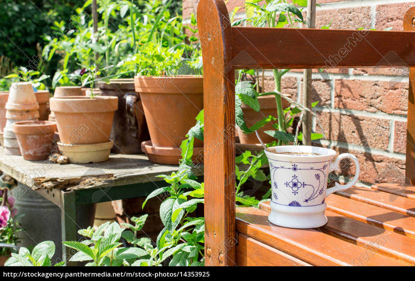 Flower Pots With Herbs And Vegetables And Coffee Cup