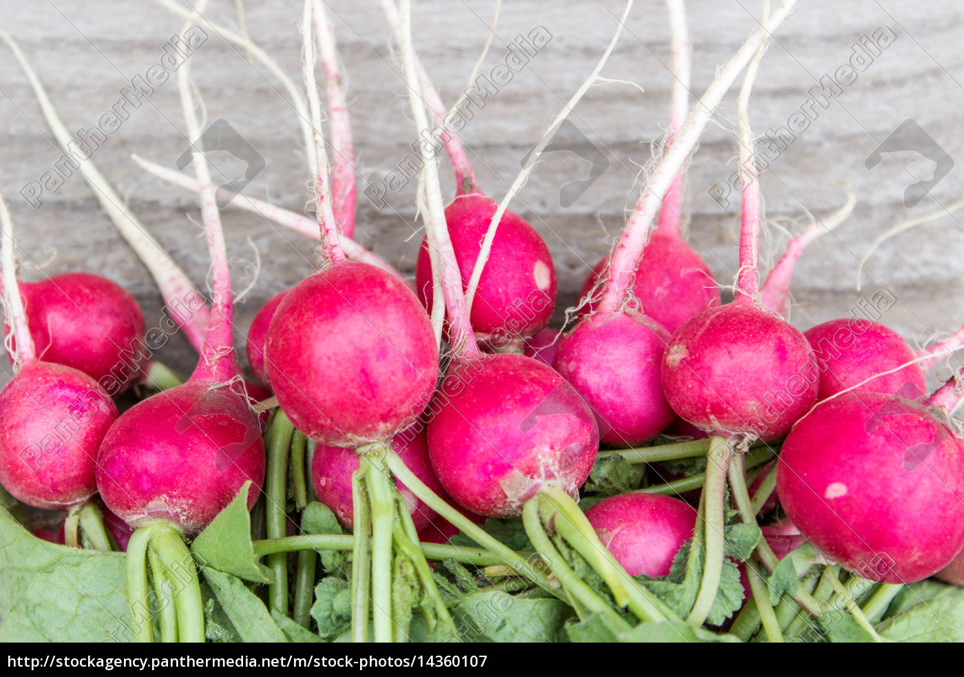 fresh, , red, radishes, on, a, wooden - 14360107
