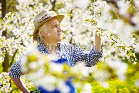 gardener cherry blossom hat gloves