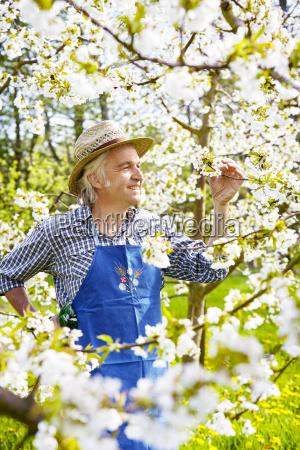 gardeners south tyrol cherry straw hat