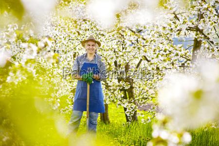gardening spade kishblossom dandelion