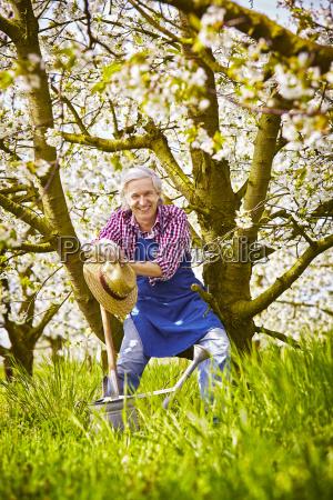 gardeners cherry tree branch sitting