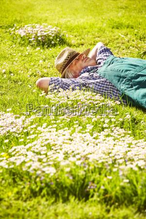 gardener is sleeping meadow flowers