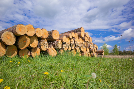logs on a holzpolter