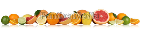fruechte orangen zitronen grapefruit in einer