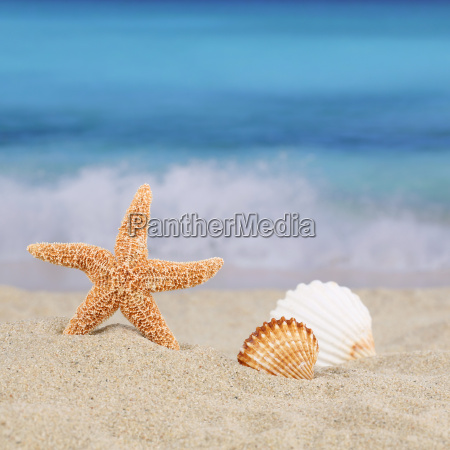 spiaggia scena di sfondo in estate