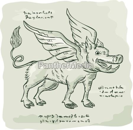 gefluechtete wildschweins seite etching