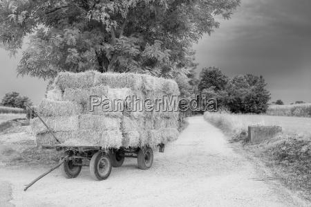 landwirtschaft ackerbau heu