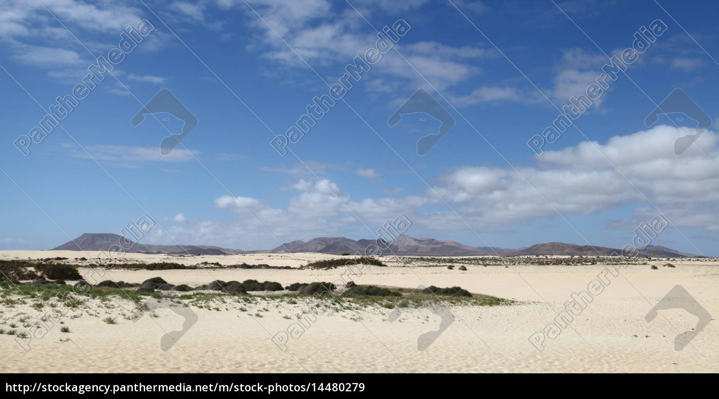 Fuerteventura, Kanarischen Inseln, Kanaren, Insel, Urlaub, Reise - 14480279