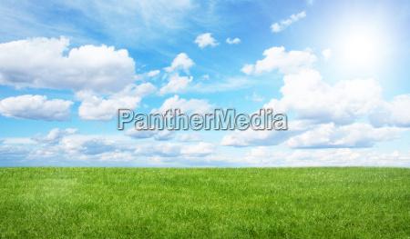 gruenes feld und blauer himmel