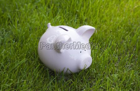 piggy bank im gruenen gras