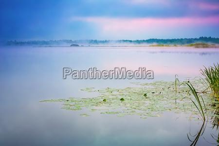foggy morning on a lake
