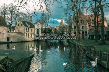 landscape at lake minnewater in bruges