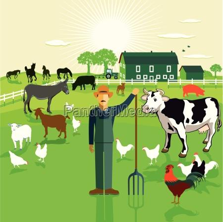 bauer farm
