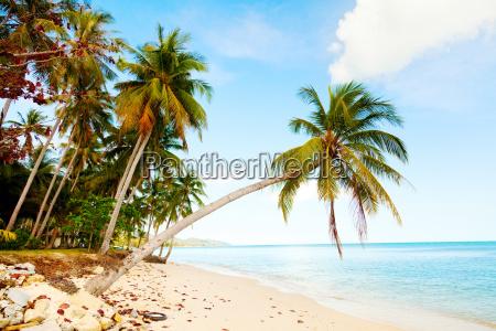 koh samui strand koh samui strand