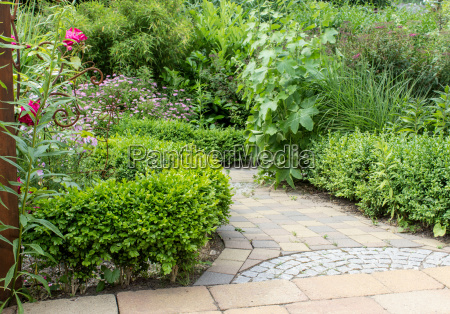 ornamental garden with green plants and