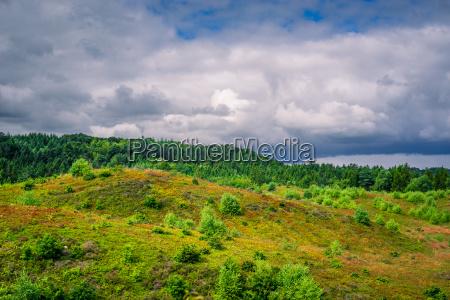 landschaft aus daenemark mit bewoelktem wetter