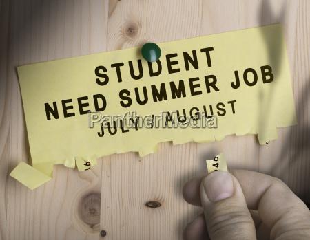 arbeitsstelle sommer sommerlich juli august student