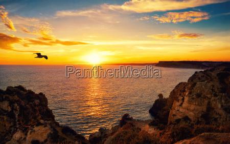 tranquil sunset scene at the ocean