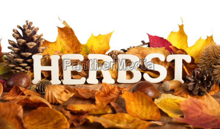 autumn foliage and lettering on a
