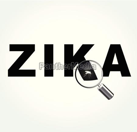 muecke auf zika virus
