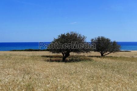 nord zypern kueste