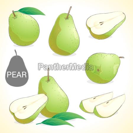 set von birnenfrucht in verschiedenen stilen