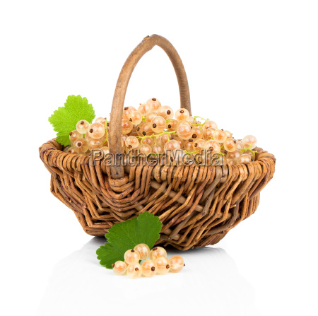 white currant in a wicker basket