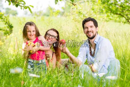 familie sitzt auf wiese und gibt