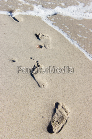 footprints in wet beach sand